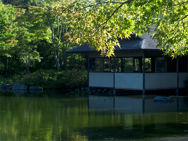 昭和記念公園の日本庭園