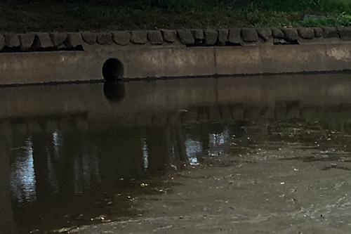 池の排水口
